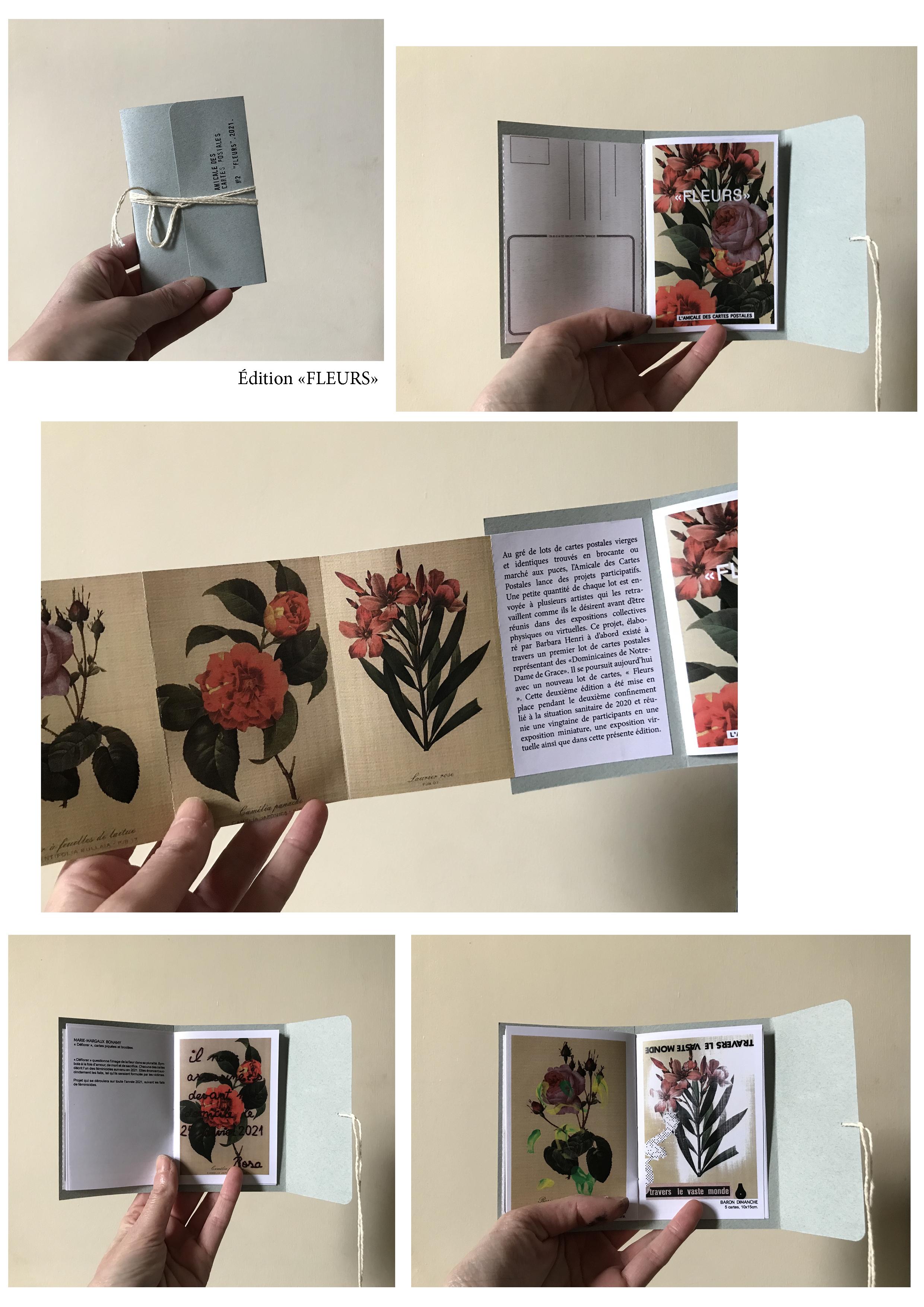 edition mep fleurs