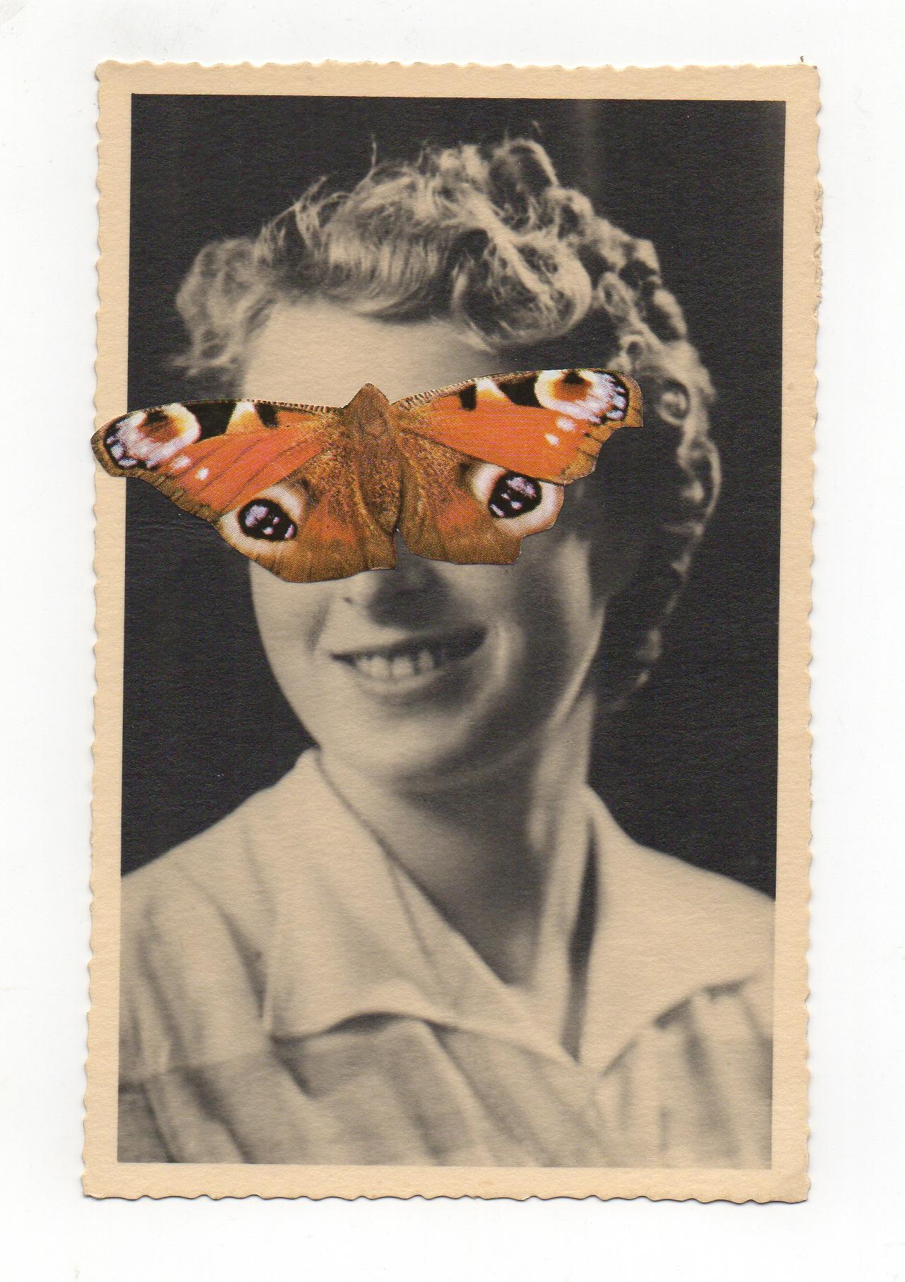 jour 1 - papillon